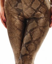 Glamour Snake Brown Tights